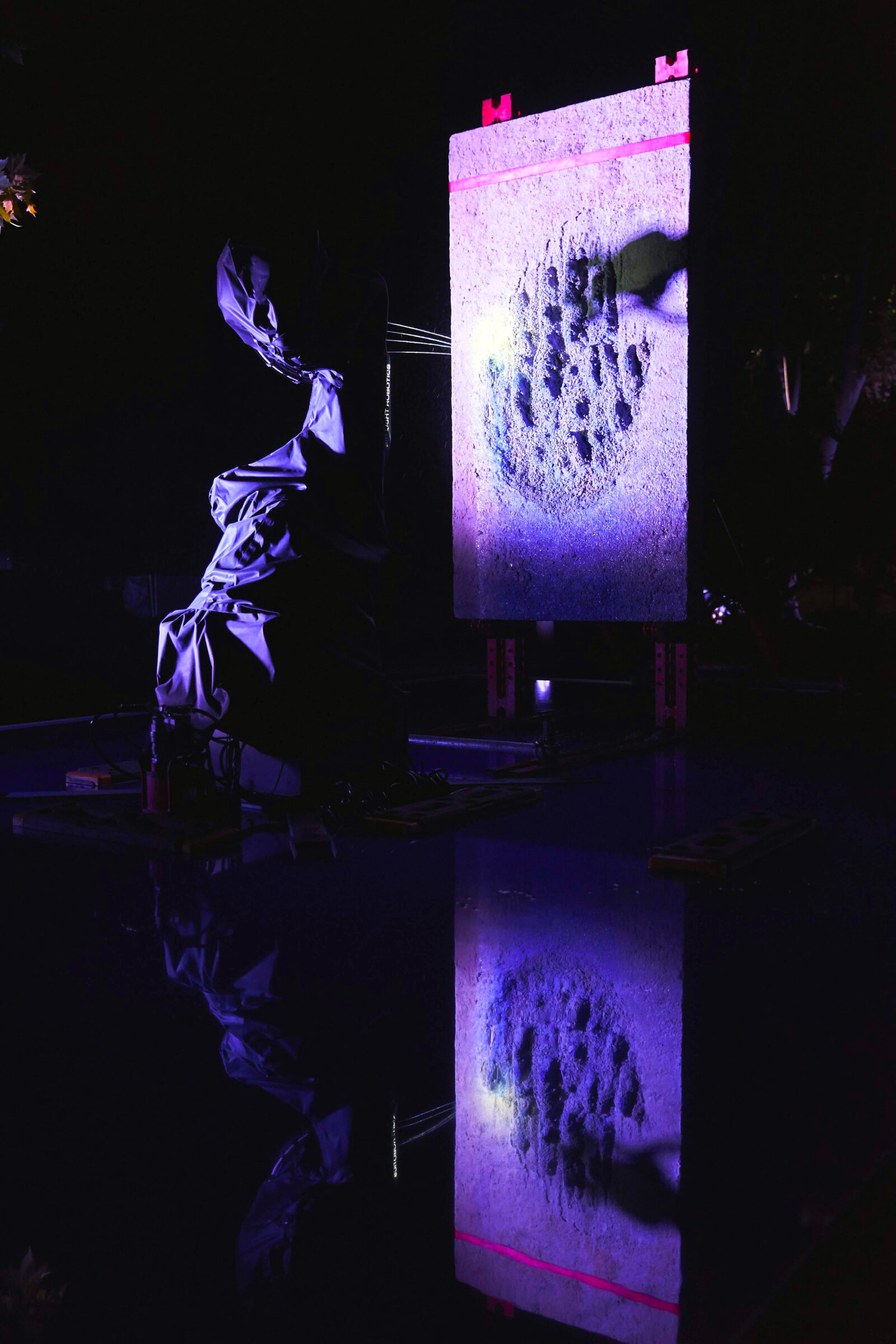 Federico Díaz, BIG LIGHT <br> I Am Leaving the Body