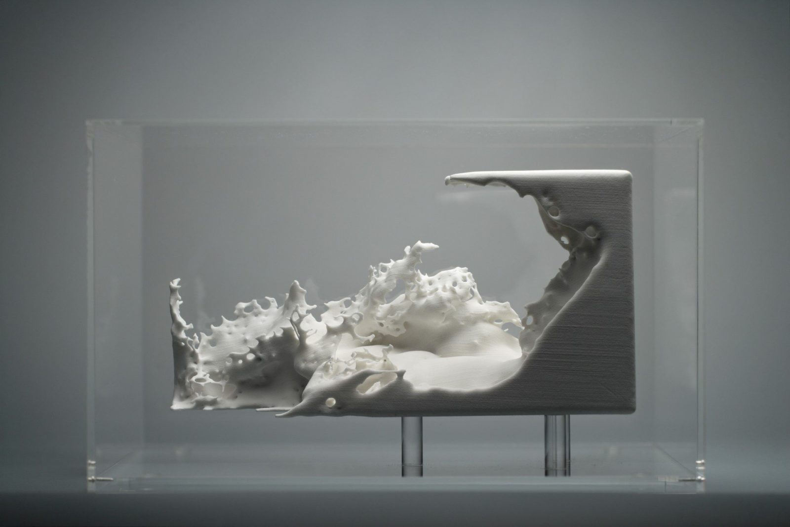 Federico Díaz, Resonance